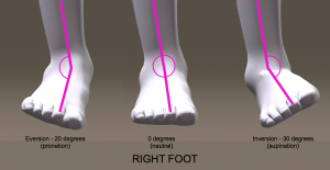 Orthotics and Chiropractic Treatment